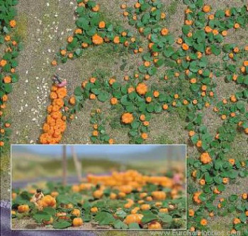 Pumpkin Field Natur Pur Kit