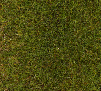 Spring Meadow 6mm Premium Ground Cover Fibres (30g)