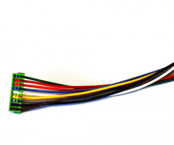 #D# Tsunami Speaker Wiring Harness - Steam/Diesel