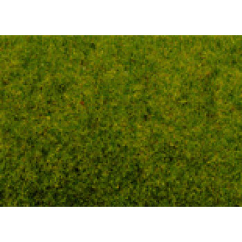 Spring Meadow Scatter Grass 2.5mm (20g)